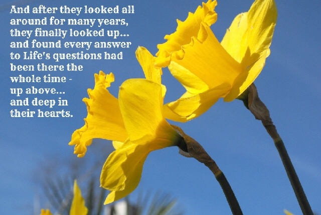 Dancing with Daffodils ~~ by #OMP writer Christine Larsen