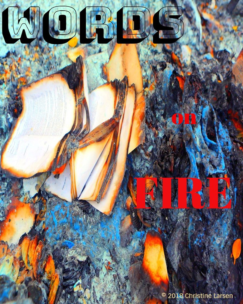 "Cover image for the story - burning books with the caption ""Words on Fire"""